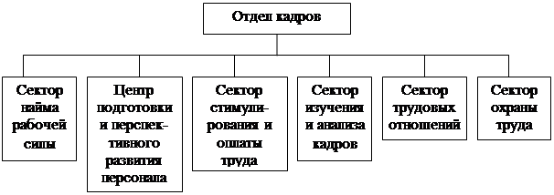 Рассмотрим структуру кадровой